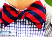 Nudo pajarita con corbata