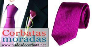 Corbatas Moradas